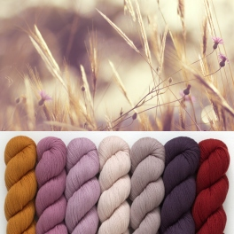 Rosy Green Wool - Cheeky Merino Joy  Moods colours